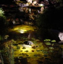10-Pond Lighting